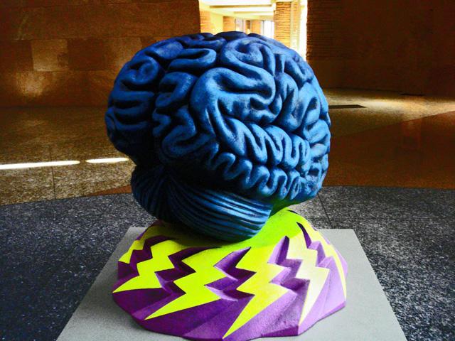 201150503_brain_ec
