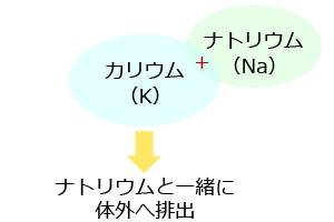 20150407_natto_03