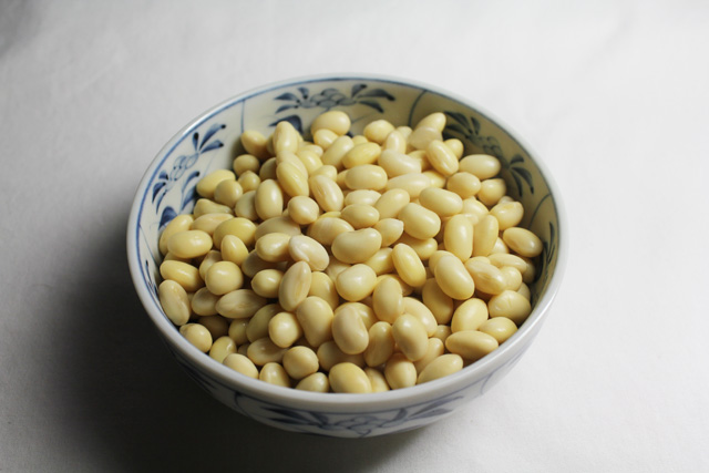 20161027_soybeans_07