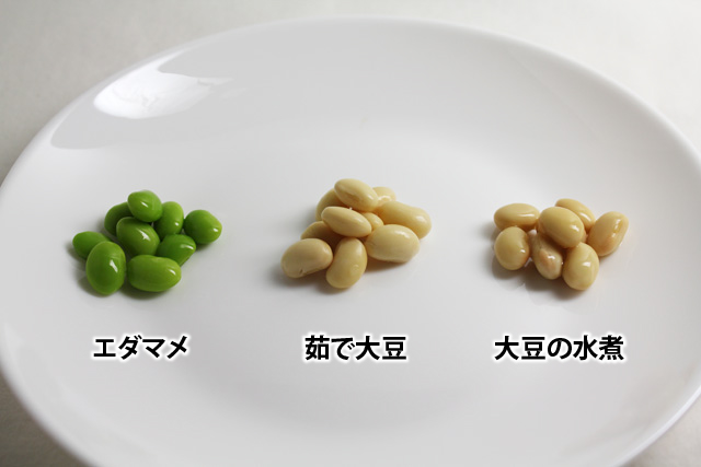 20161027_soybeans_08